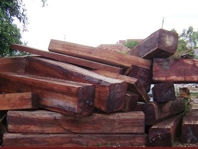 """Khởi tố vụ gỗ lậu nghi là của công ty Dũng """"lò vôi"""" - Ảnh 1"""