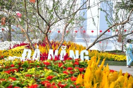 Ngắm bản đồ Việt Nam bằng hoa lớn nhất bên sông Hàn  - Ảnh 4