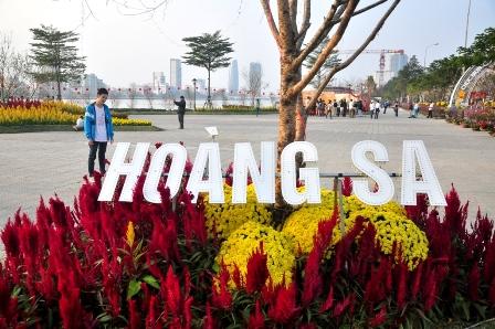 Ngắm bản đồ Việt Nam bằng hoa lớn nhất bên sông Hàn  - Ảnh 6