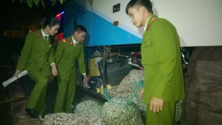 Bắt giữ xe khách chở 500kg nội tạng bốc mùi tại Nghệ An - Ảnh 2