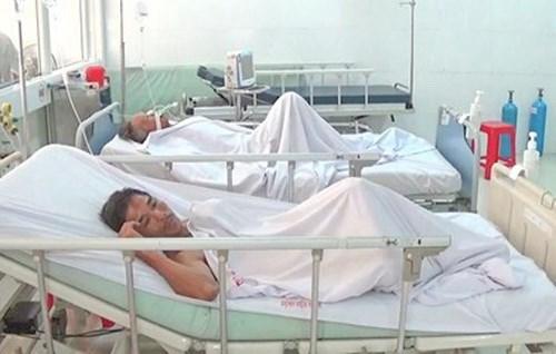 Nghệ An: 8 người nhập viện do ngộ độc cá nóc - Ảnh 1