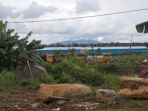 Gia Lai: Ô nhiễm từ trại lợn gần 2 bệnh viện, bệnh nhân kêu trời - Ảnh 1