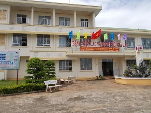 Gia Lai: Ô nhiễm từ trại lợn gần 2 bệnh viện, bệnh nhân kêu trời - Ảnh 2