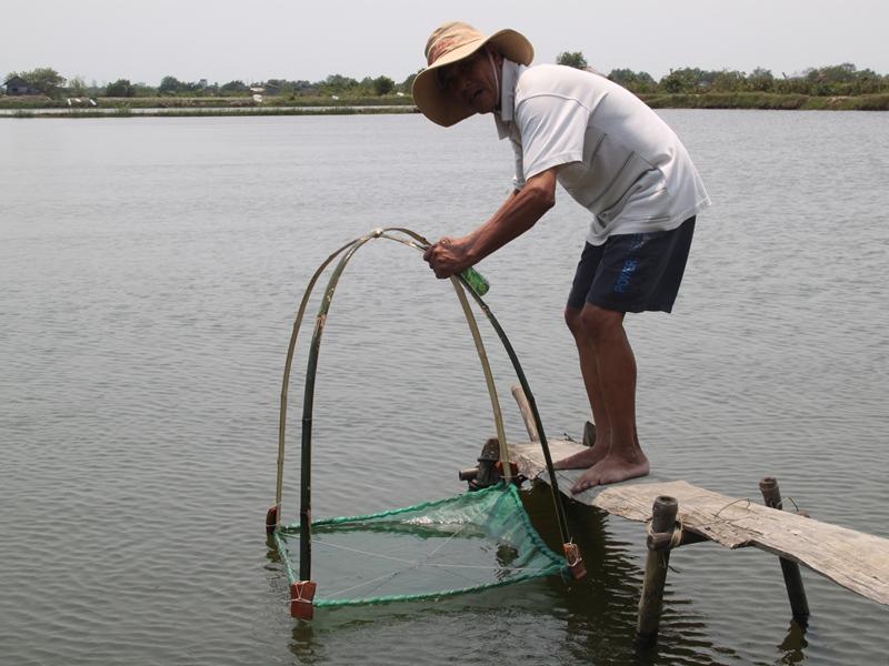 Nước nhiễm mặn ở Bình Định, hơn 17ha cá tôm chết trắng - Ảnh 1