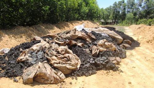 Chôn thải Formosa ở trang trại: Chi cục trưởng BVMT có là đồng phạm? - Ảnh 2