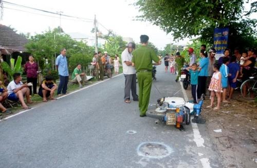 Định tội cho con ngựa kéo xe gây tai nạn chết người ở Tiền Giang - Ảnh 2