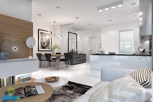 Tư vấn mua nhà, chung cư: Nên chọn căn hộ thô hay hoàn thiện? - Ảnh 2