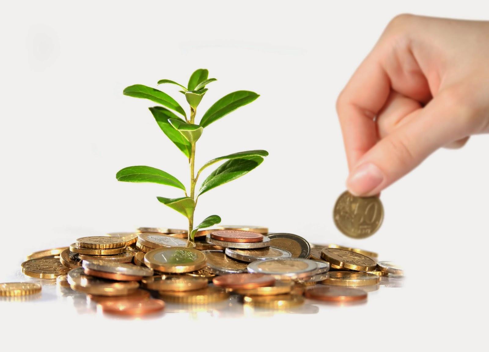 Những ý tưởng kinh doanh cho người ít vốn - Ảnh 1