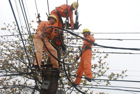 Sếp lớn tập đoàn điện lực EVN thu nhập gần 600 triệu đồng/năm - Ảnh 1