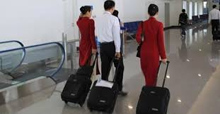 Phi công Vietnam Airlines bị bắt giữ tại Nhật vì không trả tiền siêu thị - Ảnh 1