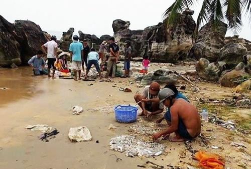 Khoảng 2 tấn hải sâm chết trôi dạt vào bờ - Ảnh 1