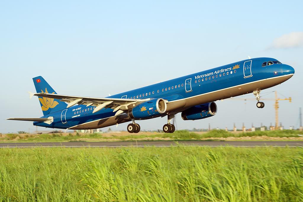 Máy bay Vietnam Airlines phải tạm dừng bay vì chim va vào động cơ - Ảnh 1