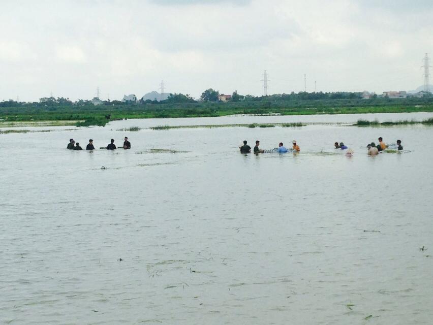 CSGT, bộ đội ngâm mình dưới nước vớt lúa giúp dân gây bão mạng - Ảnh 1
