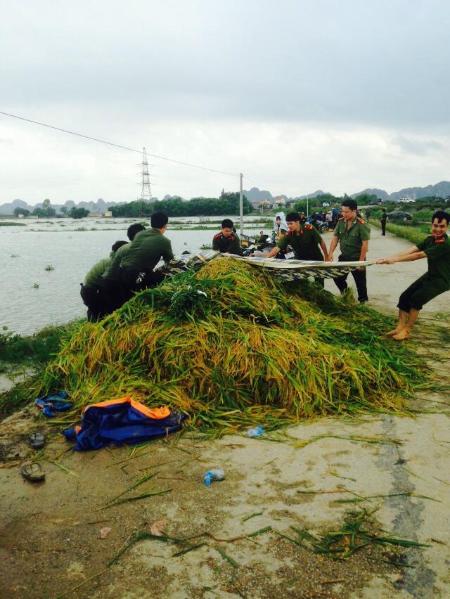 CSGT, bộ đội ngâm mình dưới nước vớt lúa giúp dân gây bão mạng - Ảnh 2