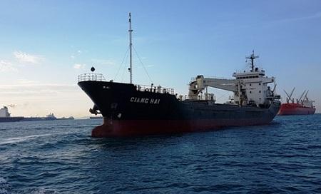 Bộ Ngoại giao lên tiếng vụ tàu hàng Việt Nam bị cướp biển tấn công - Ảnh 1