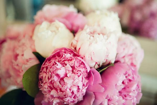 Ý nghĩa những loài hoa tặng mẹ nhân ngày Phụ nữ Việt Nam 20/10 - Ảnh 6