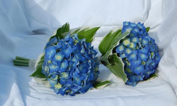 Ý nghĩa những loài hoa tặng vợ ngày 20/10 - Ảnh 2