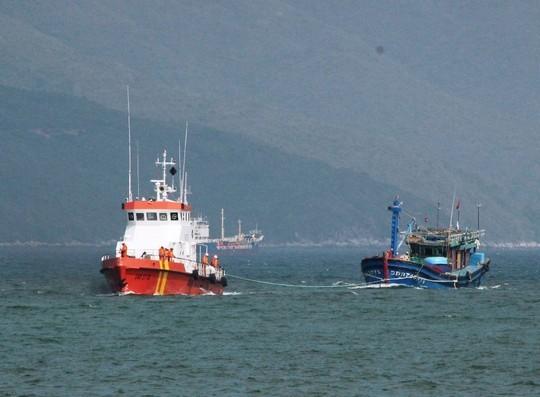 12 ngư dân được cứu sau 2 ngày trôi dạt trên biển - Ảnh 1