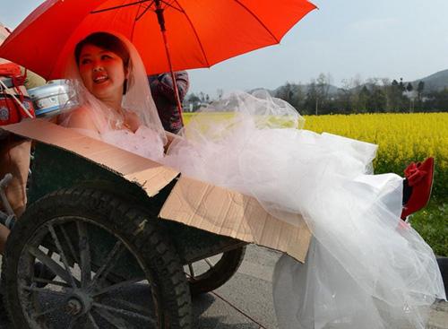 Màn rước dâu độc nhất: Chú rể bán nude kéo xe bò đón dâu - Ảnh 2