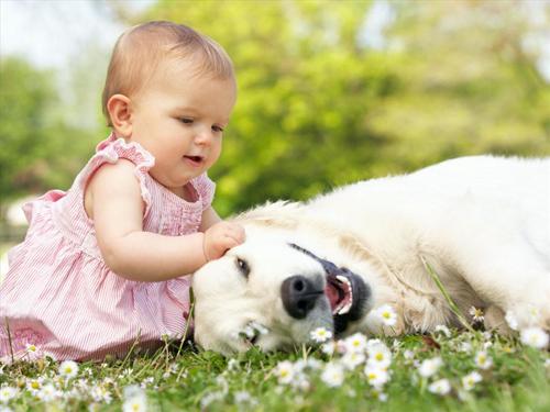 Những sai lầm hay mắc phải khi chăm sóc trẻ - Ảnh 5