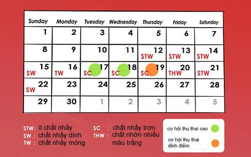 Cách tính ngày rụng trứng đơn giản để dễ thụ thai - Ảnh 3