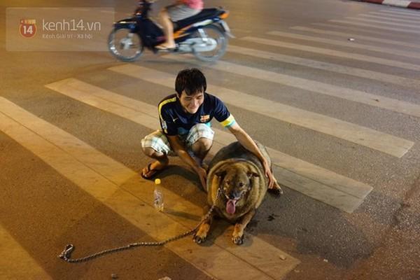 Chú chó béo nhất Hà Nội hàng ngày đi bộ để... giảm cân - Ảnh 4