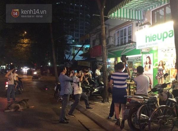 Chú chó béo nhất Hà Nội hàng ngày đi bộ để... giảm cân - Ảnh 6