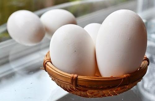 Sự thật ăn trứng ngỗng sẽ giúp con thông minh hơn? - Ảnh 1