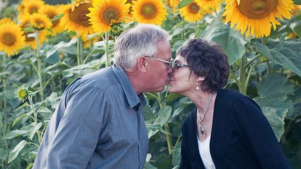 Tự tay trồng cả cánh đồng hoa hướng dương để tưởng nhớ vợ - Ảnh 1