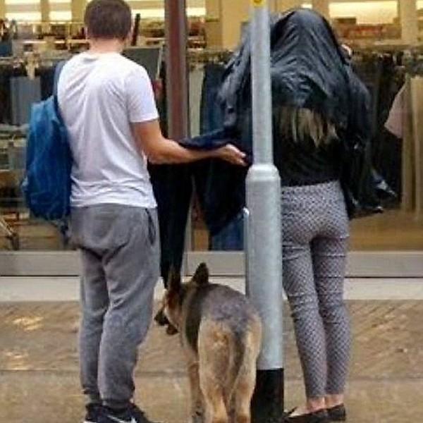 Xúc động bức ảnh cặp đôi cởi áo khoác che mưa cho chú chó lạ - Ảnh 1