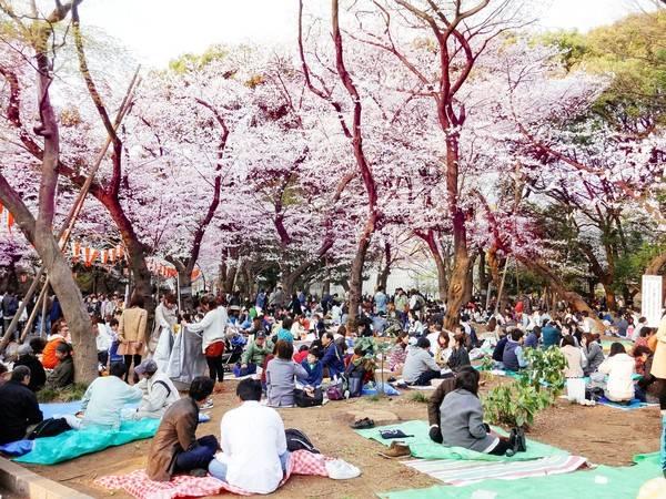 4 điều luật kì lạ của Nhật Bản khiến du khách... toát mồ hôi - Ảnh 4