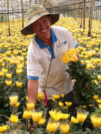 'Hải Kim Cương', ông chủ vườn cúc tiền tỷ đất Lâm Đồng - Ảnh 3