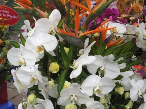 Ngắm sắc hoa tươi rộn ràng xuống phố ngày 8/3 - Ảnh 3