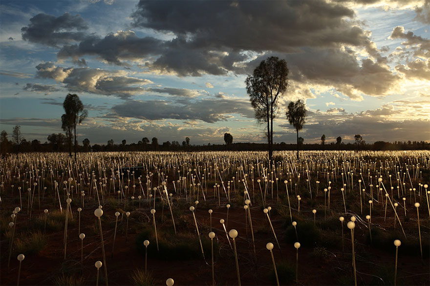 Dùng 50.000 đèn led thắp sáng vùng quê hẻo lánh thành sa mạc huyền diệu - Ảnh 3