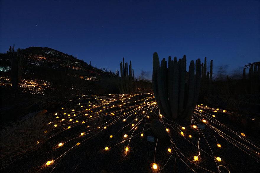 Dùng 50.000 đèn led thắp sáng vùng quê hẻo lánh thành sa mạc huyền diệu - Ảnh 7
