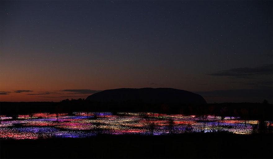 Dùng 50.000 đèn led thắp sáng vùng quê hẻo lánh thành sa mạc huyền diệu - Ảnh 2