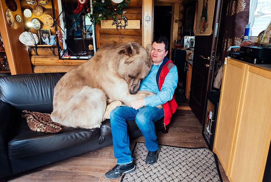 Ngạc nhiên cặp vợ chồng suốt 23 năm… sống chung với gấu - Ảnh 2