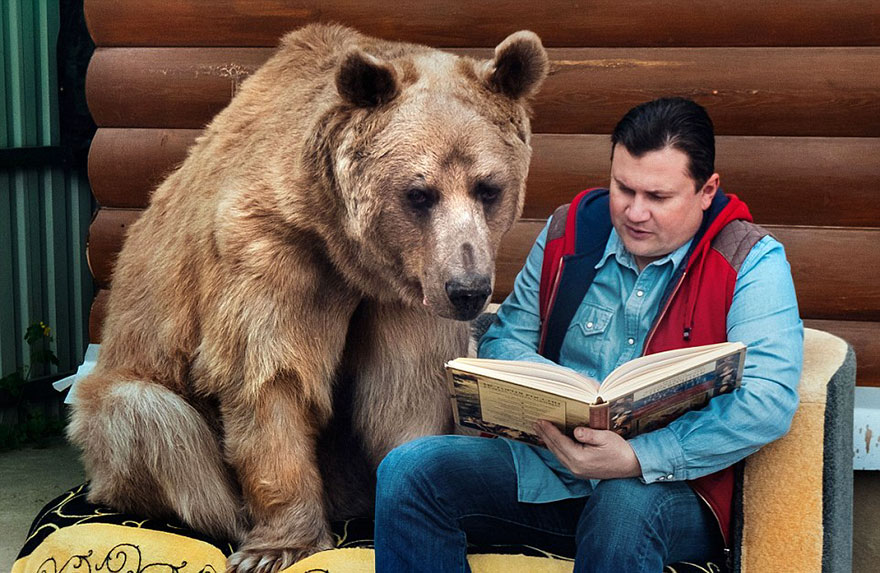 Ngạc nhiên cặp vợ chồng suốt 23 năm… sống chung với gấu - Ảnh 6