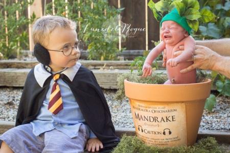 """Em bé hóa thân thành Harry Potter """"siêu đáng yêu"""" - Ảnh 1"""