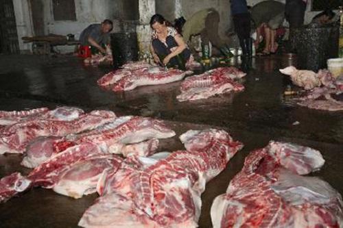 Chợ không phép, lợn được kiểm tra bằng... cảm quan - Ảnh 2