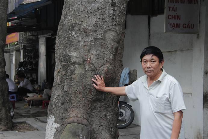 Gặp mặt người 'bí ẩn' tại buổi họp báo về chặt cây xanh - Ảnh 2