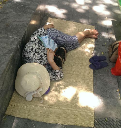 Vạ vật chống chọi với cái nắng 39 độ C trong bệnh viện - Ảnh 3