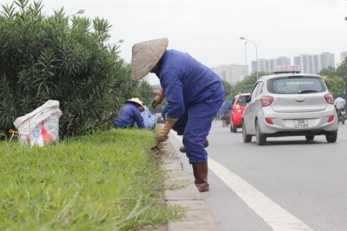 Cắt cỏ ở đại lộ Thăng Long mất 53 tỷ/năm: Sở Xây dựng lên tiếng - Ảnh 1