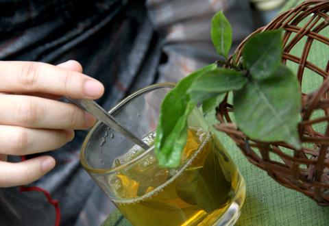 Tác dụng phụ của trà xanh và 12 cấm kỵ khi dùng trà - Ảnh 2