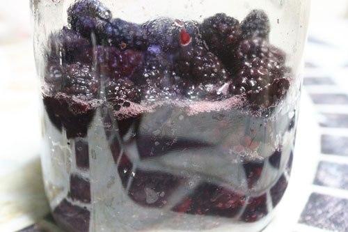 Hướng dẫn cách ngâm nước dâu tằm siro ngọt lịm dễ uống - Ảnh 3