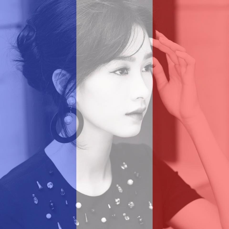 Sao Việt thay avatar cờ Pháp cầu nguyện cho Paris - Ảnh 1