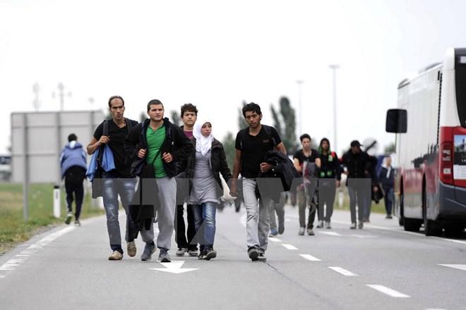 Nghị viện châu Âu tán thành kế hoạch tái phân bổ người tị nạn - Ảnh 1