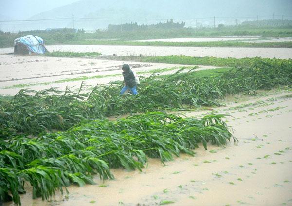 Trung Quốc phải sơ tán cả triệu người để tránh bão - Ảnh 1