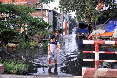 Người Sài Gòn lại khổ sở dọn bùn đen do mưa lớn - Ảnh 3