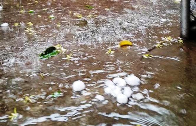 Lại xuất hiện mưa đá to bằng quả trứng trút xuống Nghệ An - Ảnh 1